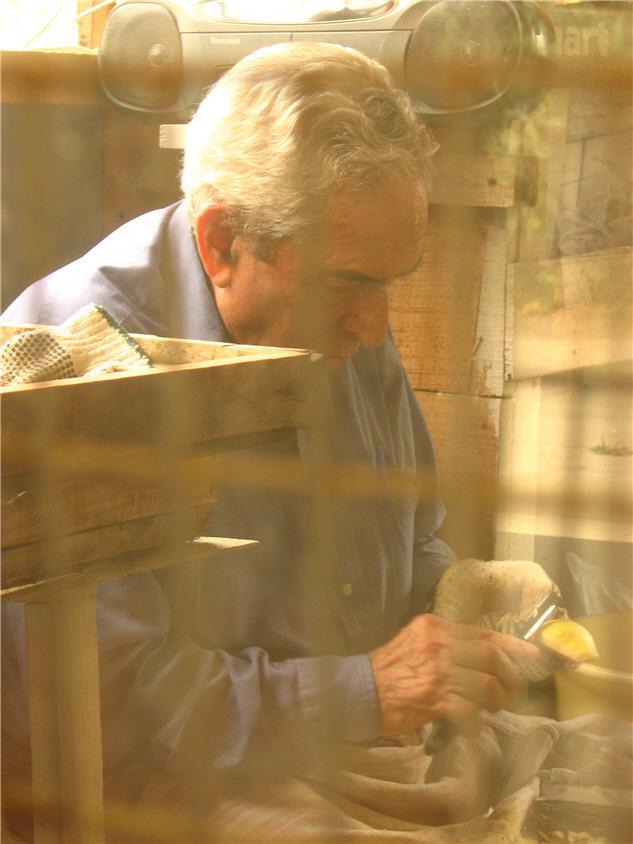 my grandpa peeling quince