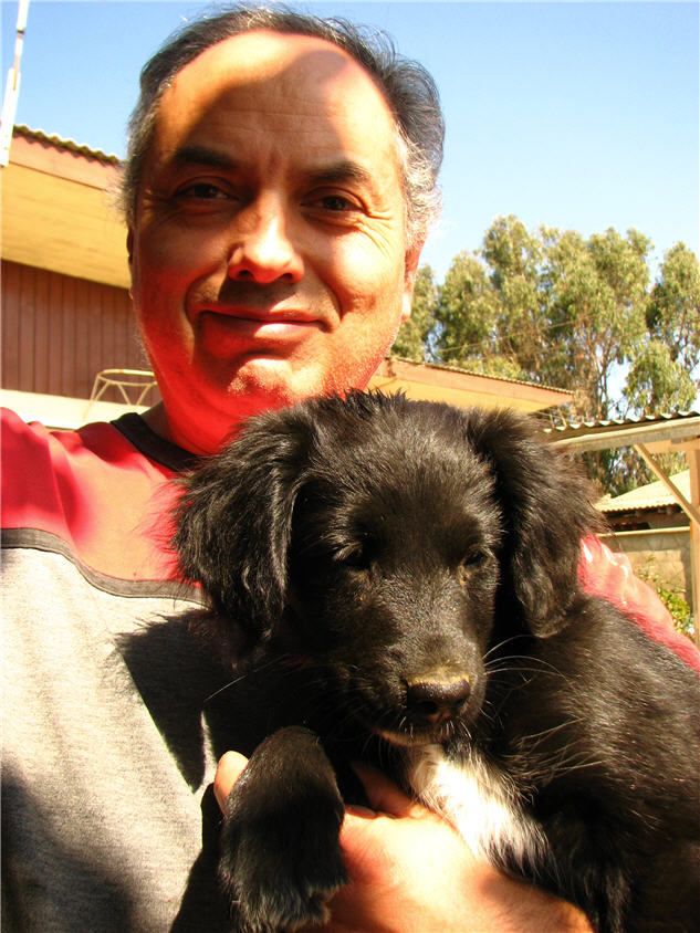 my dad and a neighbour's puppy
