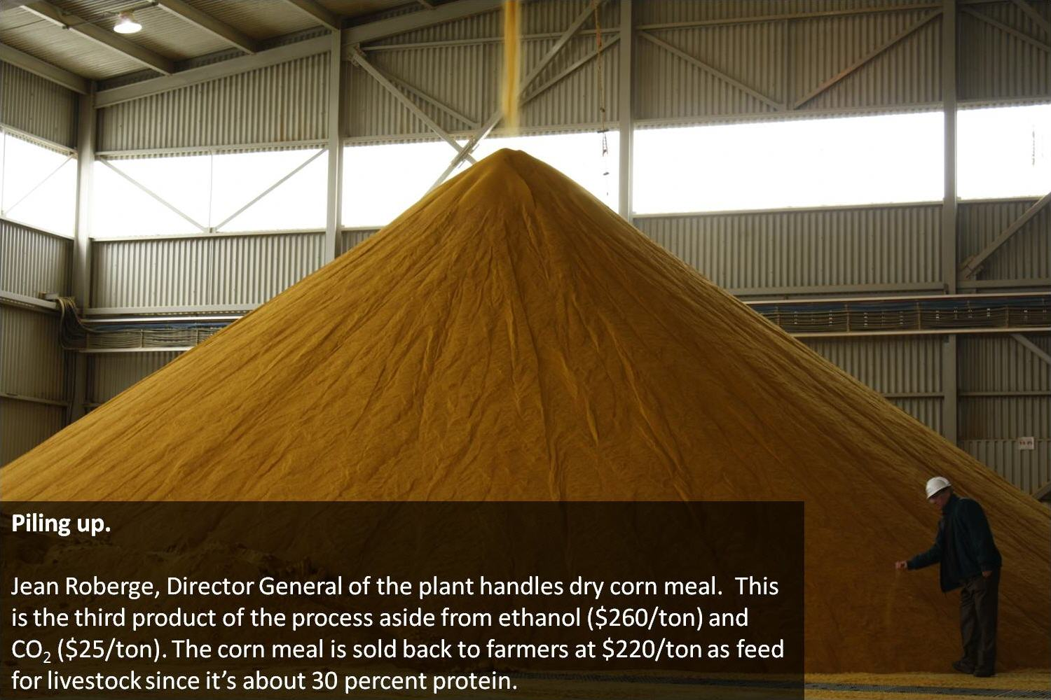 Giant pile of corn meal at Greenfield Ethanol