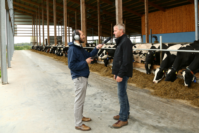 reporter interviews man with cows in background